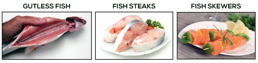 3-col-fish